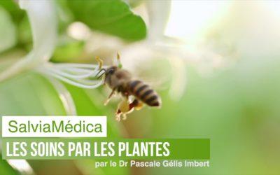 Les soins par les plantes