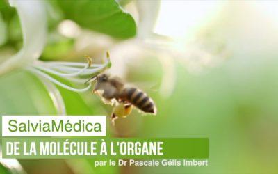 De la Molécule à l'organe